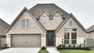 Manvel Single Family Home For Sale: 2207 Blackhawk Ridge Lane