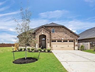 Rosenberg Single Family Home For Sale: 8618 Green Paseo Place
