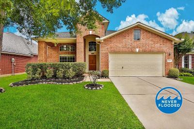 Tomball Single Family Home For Sale: 17410 Granberry Gate Drive