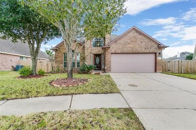 Fort Bend County Single Family Home For Sale: 2507 Cascade Glen Drive