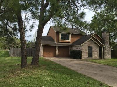 Harris County Single Family Home For Sale: 10134 Green Valley Lane