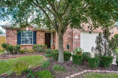 Pearland Single Family Home For Sale: 11403 Morning Cloud Drive