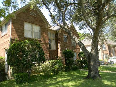 Sugar Land Single Family Home For Sale: 4510 Heatherwilde Street