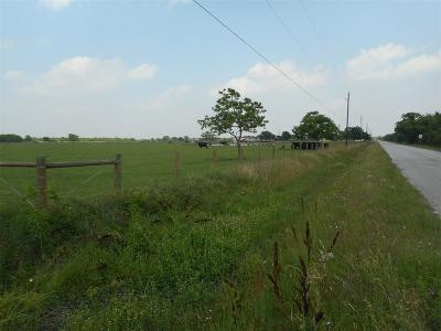 Katy Farm & Ranch For Sale: 25810 Beckendorff Road