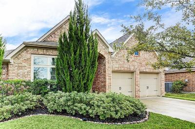 Pearland Single Family Home For Sale: 2213 Lost Bridge Lane