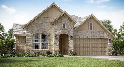 New Caney Single Family Home For Sale: 18907 Sorrento Point Drive
