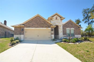 Tomball Single Family Home For Sale: 19 Handbridge Place
