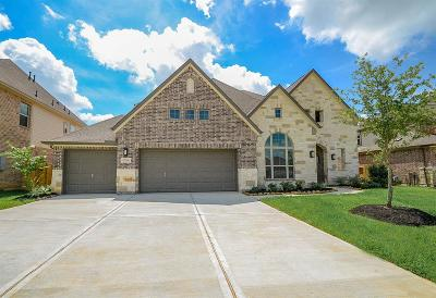 Katy Single Family Home For Sale: 27951 Crosswater Lane