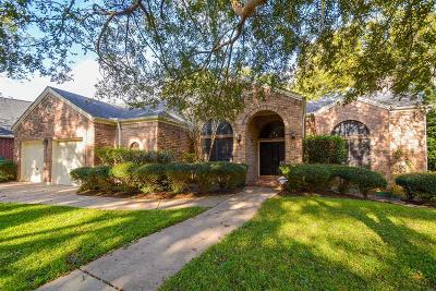 Fulshear Single Family Home For Sale: 4768 Lake Village Drive