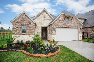 Galveston County, Harris County Single Family Home For Sale: 7407 Bethpage Lane