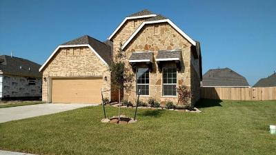 Baytown Single Family Home For Sale: 115 San Marcos Drive