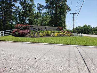 Willis Single Family Home For Sale: 12038 Texas National Boulevard