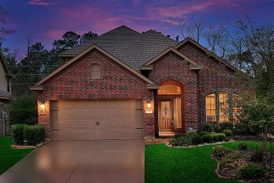 Tomball Single Family Home For Sale: 71 S Greenprint Circle
