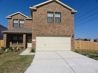 Katy Single Family Home For Sale: 19602 Green Oasis Court