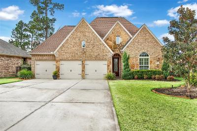 Montgomery Single Family Home For Sale: 115 Riverbend Court