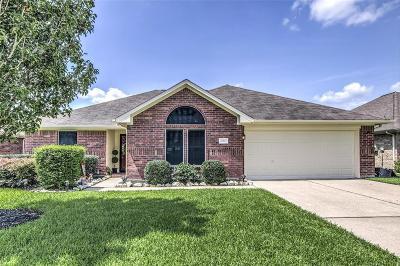 Dickinson Single Family Home For Sale: 222 Dani Lane
