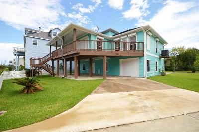 Clear Lake Shores Single Family Home For Sale: 130 E Shore Drive