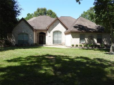 Huffman Single Family Home For Sale: 451 Vista Del Lago Drive