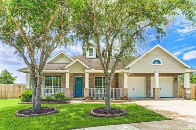 Sugar Land Single Family Home For Sale: 9126 Carriage Point Drive