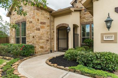Houston Single Family Home For Sale: 13722 Llano Lake Court
