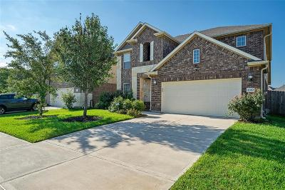 Katy Single Family Home For Sale: 27023 Triana River Circle