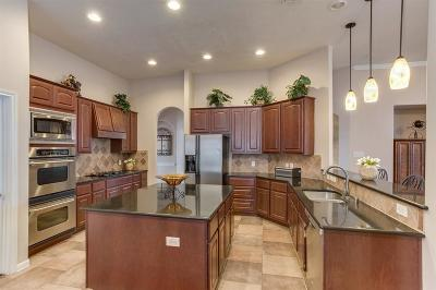 Tomball Single Family Home For Sale: 22610 Two Lakes Drive