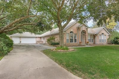 Tomball Single Family Home For Sale: 16919 Avenfield Road