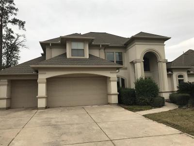 Spring Single Family Home For Sale: 6210 Graff Net Court