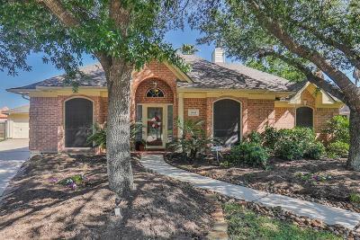 Houston Single Family Home For Sale: 9843 Bestin Lane