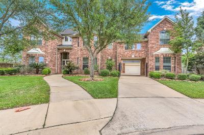 Katy Single Family Home For Sale: 3803 Trailstone Lane