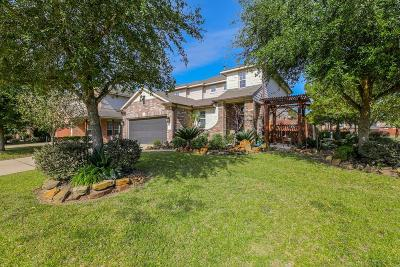 Porter Single Family Home For Sale: 21437 Naples Hollow Lane