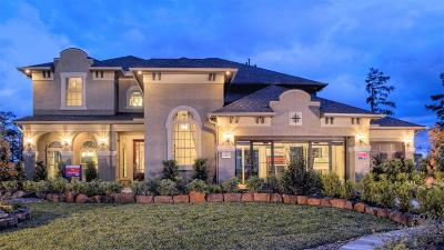 The Woodlands Single Family Home For Sale: 6 Winter Thicket