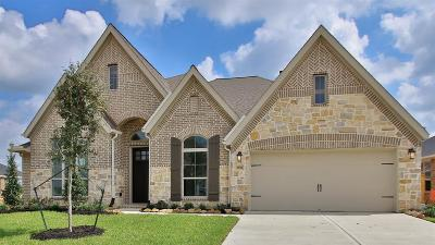 Tomball Single Family Home For Sale: 20206 Desert Foal Drive