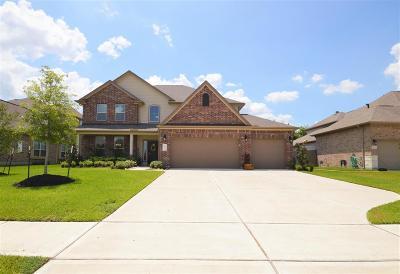 League City Single Family Home For Sale: 2938 Hawkins Creek Lane