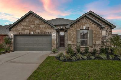Katy Single Family Home For Sale: 28427 Buffalo Fork Lane