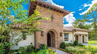 Sugar Land Single Family Home For Sale: 4931 Summer Manor