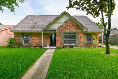 Houston Single Family Home For Sale: 12011 Newbrook Drive