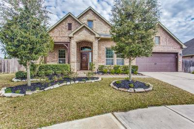 Katy Single Family Home For Sale: 2603 Park Hills Drive