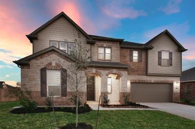 Pearland Single Family Home For Sale: 3902 Mountford Drive