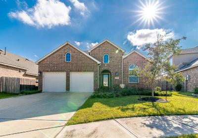 League City Single Family Home For Sale: 614 Dunlavy Lane