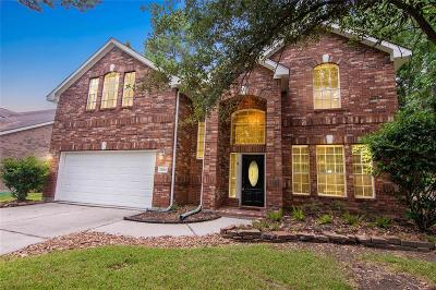 New Caney Single Family Home For Sale: 20202 Water Point Trail