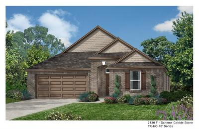 Pearland Single Family Home For Sale: 14205 Carlisle Hollow Trail