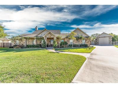 Katy Single Family Home For Sale: 6503 Corianne Court
