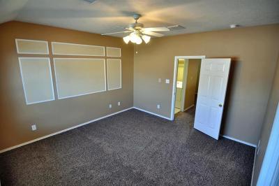 Houston Single Family Home For Sale: 14310 Larkhall Lane