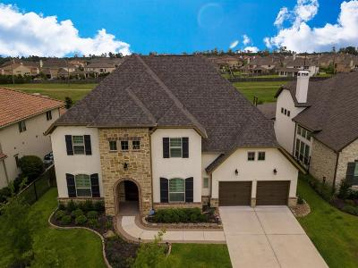The Woodlands Single Family Home For Sale: 42 Jaden Oaks Place