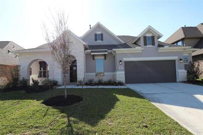 Tomball Single Family Home For Sale: 19119 Desert Eagle