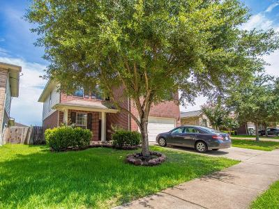 Sugar Land Single Family Home For Sale: 9711 Sugarblossom Lane