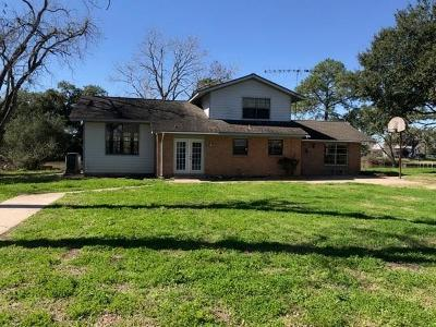 Brazoria Single Family Home For Sale: 2941 County Road 471