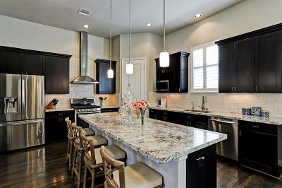 Houston Single Family Home For Sale: 1921 Hickory Street