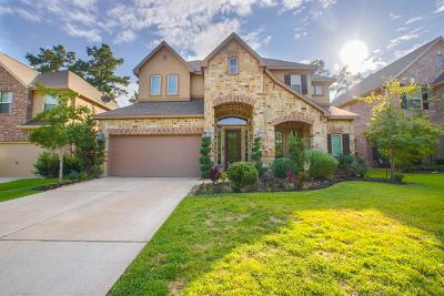 The Woodlands Single Family Home For Sale: 11 Canoe Bend Drive